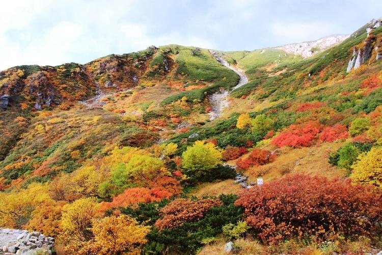 信州の紅葉狩りのあとに食べたい新名物「ガレット」<長野伊那谷の当地 ...